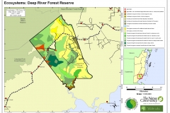 Ecosystems: Deep River Forest Reserve