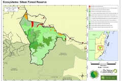 Ecosystems: Sibun Forest Reserve