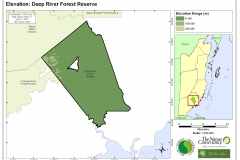 Elevation: Deep River Forest Reserve