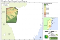 Elevation: Maya Mountain Forest Reserve
