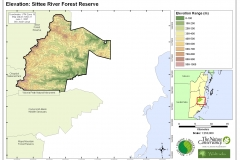 Elevation: Sittee River Forest Reserve