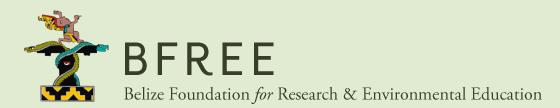 Belize Foundation for Research and Environme