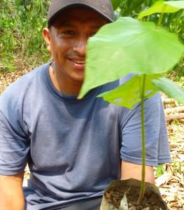 Elmer Tzalam, Cacao Farm Manager