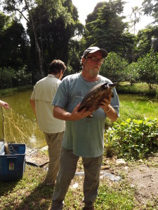 Rick Hudson, President of the TSA, holding a female subadult Hicatee turtle during a recent visit to the HCRC