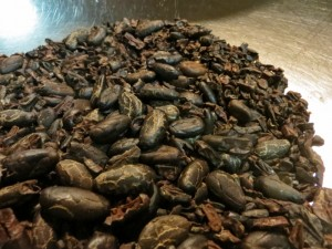Cacao beans ready to be made into chocolate.
