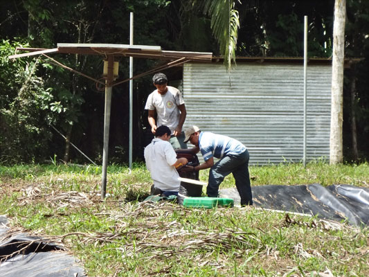 Marcelino Pop (right) works with staff from Belize Aquaculture Limited to ready the HCRC for its new resident turtles.