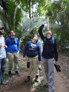 UF students gather vegetation data for their mock trial