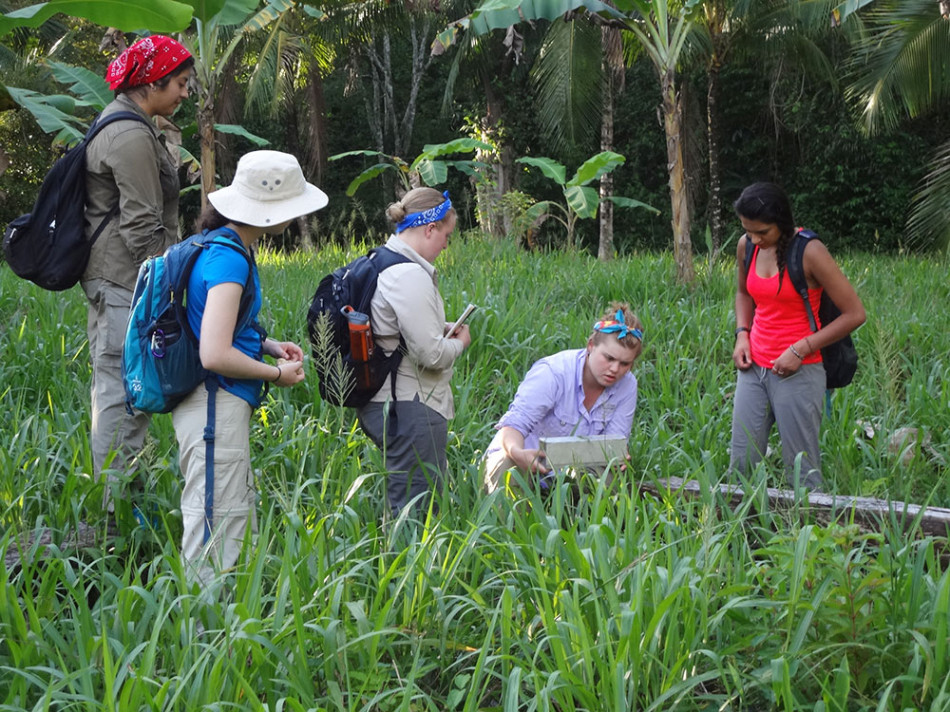 Belize Foundation For Research And Environmental Education