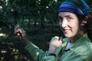 Emily McKinnon spent significant time at BFREE studying Wood Thrushes in their overwintering grounds.
