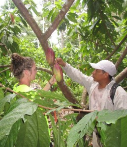 Emory and Henry student helps out in the cacao farm