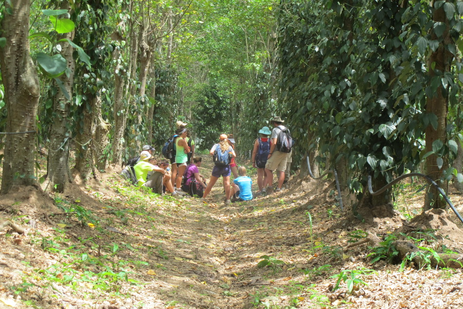 Otterbein students take a break during their tour of the Spice Farm