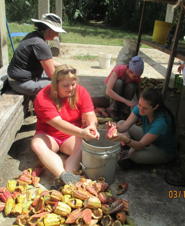 Emory and Henry help shell cacao